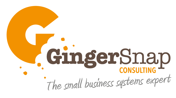 Hammerspace Video Client - Gingersnap Consulting logo